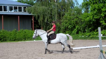 terbiye : summer, outdoors, boy rider, jockey riding on thoroughbred beautiful white stallion, horse, on the training sand field, ground. boy learns to ride a horse in horse riding school.