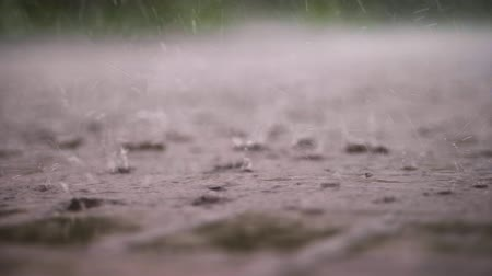 paving : close-up, large, heavy drops of rain, rainfall, shower, fall with a spray, Water splashes, on the wet surface of puddles, the surface of water. big drops from the rain on wet floor texture