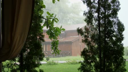 torrential rain : summer rain, a thunderstorm, a heavy downpour at the recreation center, in a pine forest, park. water flows down in large drops Stock Footage