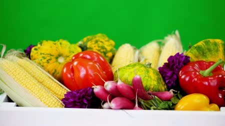 patissons : close-up, a white wooden box with the harvest, different fresh vegetables, corn, pepper, radish, zucchini, patissons. on green background, in studio, Healthy food to your table, Healthy nutrition.