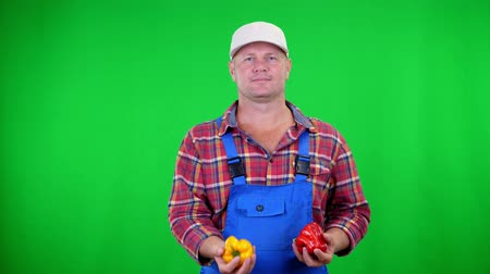 pimentas : smiling male farmer in plaid shirt and hat holds sweet peppers,playing, throws them, on Chromakey, green background. concept of Healthy food to your table