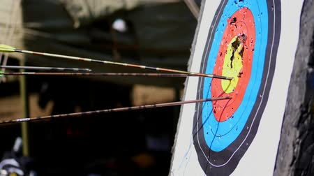 tiro com arco : An outdoor target for shooting with a bow and arrows, for archery arrows on a summer day , in the Park. Archery target , Hit the goal. target board and arrow shoot. Stock Footage