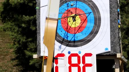dart oyunu : An outdoor target for shooting with a bow and arrows, for archery arrows on a summer day , in the Park. Archery target , Hit the goal. target board and arrow shoot. Stok Video