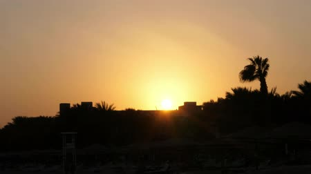 sepia : beautiful orange-red sunset in hot Africa, dark outlines of palm trees, and rooftops