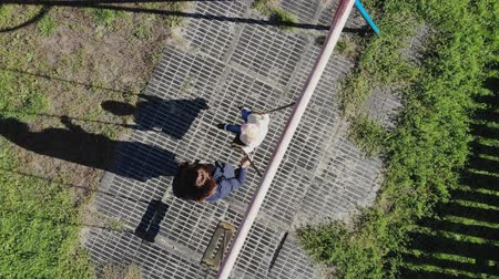 houpačka : CHERKASY, UKRAINE, OCTOBER 17, 2018: Mom swings her pretty little daughter, a two-year-old girl, in an autumn park on a swing. warm autumn sunny day. aero, view from above. long dark shadows
