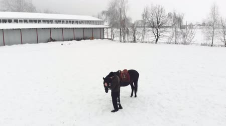 prosthesis : aero, top view, winter, disabled man stands near black horse on snowy field. he has prosthesis instead of his right leg. he learns to ride horse, hippotherapy. rehabilitation of disabled with animals.