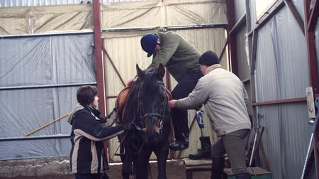 prosthesis : in special hangar, a young disabled man, with artificial limb learns to ride a horse with close supervision teachers, they help him to mount his horse. hippotherapy. rehabilitation of disabled with animals.