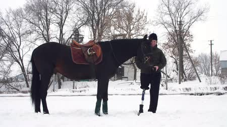 prosthesis : snowy winter, disabled man jockey stands near black horse outdoors. he has prosthesis instead of his right leg. he learns to ride horse, hippotherapy. rehabilitation of disabled with animals.