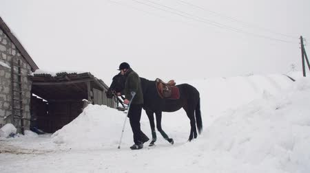 amputee : snowy winter, disabled man jockey leads, holding with reins a black horse on the way. man has a prosthesis instead of his right leg. concept of rehabilitation of disabled with animals. hippotherapy