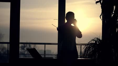 sinir : dark silhouette of Young business woman. she holds glasses in her hand, talks emotionally on mobile phone, gesticulates with hands, against background of large office window, at sunset, in rays of light. Stok Video