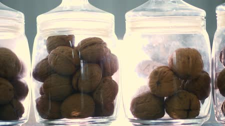 przeszczep : close-up, stored in glass jars are seeds, walnuts, various species grown on breeding, hybrids of nuts. nuts of the best quality. nut for pedigreed horses.