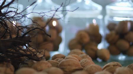 przeszczep : close-up, stored in glass jars are seeds, walnuts, various species grown on breeding, hybrids of nuts, of the best quality. walnut cultivation. Wideo