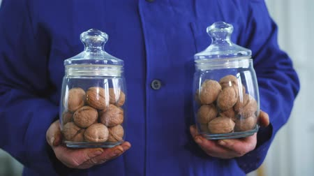 nogueira : close-up, worker s hands hold two glass jars of walnut, of different kinds, grown selectively, hybrids of nuts of better quality. walnuts for the food industry. fodder walnut for thoroughbred horses.