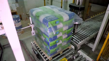 dava : UKRAINE, CHERKASSY, MARCH 25, 2019: agricultural company MAIS. automated packaging process, wrapping corn grain bags on pallets with film , for further loading and transportation Stok Video