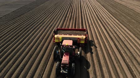 plowed land : UKRAINE, CHERKASY, MAY 5, 2019: aerial survey, process of mechanized machine potatoe planting. large tractor with special equipment and potato Seeds, rides through plowed black soil field, plants potatoes, forms even rows, spring day, planting season.