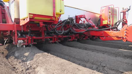 koca : close-up, process of mechanized machine potatoe planting. large tractor with special equipment makes Long flat top rows, furrows, mounds, for newly planted potatoes on plowed black soil field, spring day, planting season. Stock mozgókép