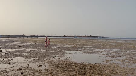 branqueamento : low tide on the beach, dead reef, at sunset. man and girl teenager in swimsuits walk on the beach at low tide, consider the rare fauna of the dead reef. pollution of the sea, fauna and fauna disappear.