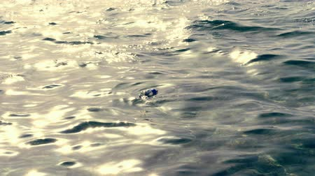 oceanos : close-up, on the surface of the sea water, in the rays of sunset, floats an empty plastic bottle. concept of pollution of the seas and oceans, the environment.