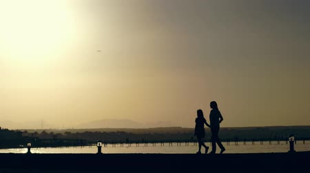 dark bay : summer at sunset, in bay, along beach, young woman and teenager girl are walking. Dark outlines against background of orange sunset, palm trees, mountains, and sea are visible. a plane is flying in the sky Stock Footage