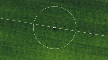 casar : aerial video, view from the top, in the stadium, in the center of a green football field, newlyweds in wedding attire dancing, spinning. spring sunny day. wedding Vídeos