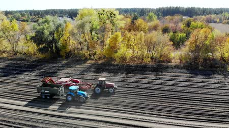 useing machinery at farm field during potatoe harvesting . Potatoe picking machine digs and picks potatoes, unloading the crop into the back of a truck. warm autumn day Vídeos