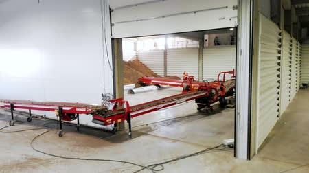 sorteren : CHERKASY, UKRAINE, OCTOBER 1, 2019: Employees monitor automated process of transporting potatoes to a warehouse by conveyor machinery belt. potato harvest, farming