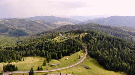 Трансильвания : aero shooting. beautiful summer landscape, mountains sheltered by a dense green coniferous forest. Carpathians. Transylvania, Romania.