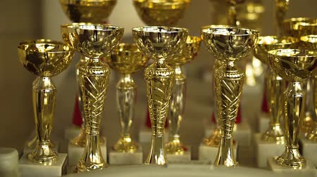 un : Golden goblets. Champion Achivements. Stok Video