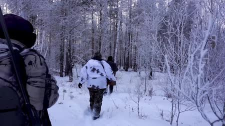 commando : Several Hunters in the Woods. Armed Rangers in winter forest Stock Footage