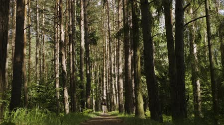A girl walks through the forest Stock Footage