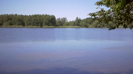Landscape summer Lake Stock Footage