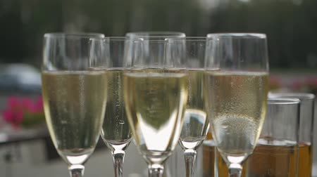 champagne flute : Champagne bubbles in a glass