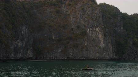 vietnã : LOCAL WOMAN PADDLING TRADITIONAL BOAT, HA LONG BAY, CAT BA NATIONAL PARK, VIETNAM – 5 APRIL 2018 Local woman wearing conical leaf hat in traditional boat in UNESCO World Heritage site, Ha Long Bay, Vietnam Vídeos