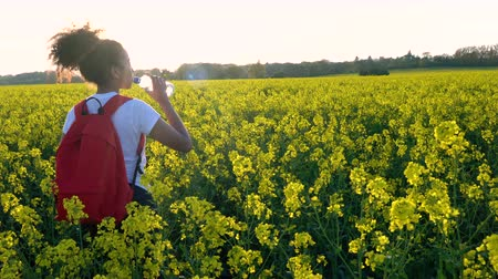 ırklararası : 4K video clip of beautiful happy mixed race African American girl teenager female young woman hiking with red backpack and bottle of water in field of rape seed yellow flowers Stok Video