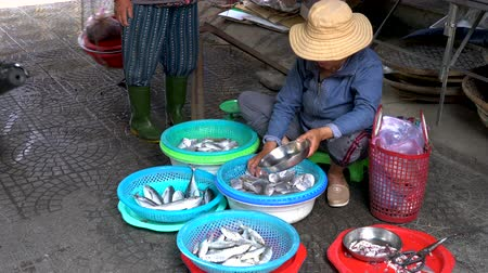 south asian food : LOCAL WOMAN SELLING FISH AT HOI AN MARKET, VIETNAM – 6 APRIL 2018: Local woman stall holder selling fish to people on the daytime streets at Hoi An Market, Vietnam