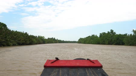 Point of view from the front of a traditional Vietnamese boat sailing on the Mekong River in the Mekong Delta, Vietnam Dostupné videozáznamy