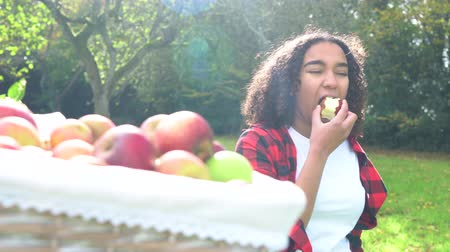 rolnik : Biracial African American mixed race teenage girl young woman carrying basket of apples onto a gray tractor through a sunny apple orchard