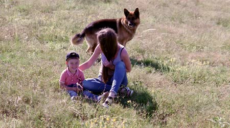 itaat : training German shepherds in nature family Stok Video