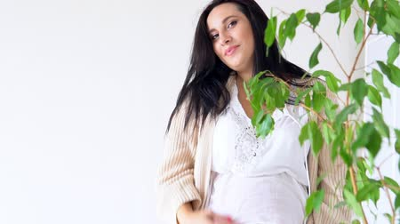 прижиматься : pregnant mom smiling stands with green plant Стоковые видеозаписи
