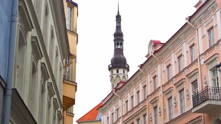 guildhall : Town hall building with old Thomas in Tallinn.