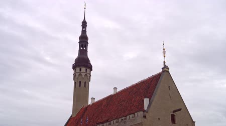 estonya : Town hall building with old Thomas in Tallinn.