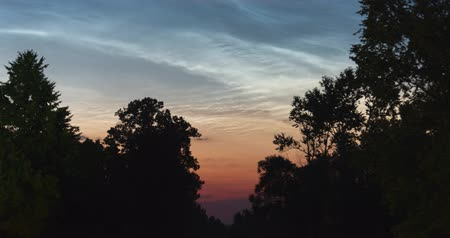 полночь : The timelapse of floating silvery clouds before dawn over the silhouettes of trees on a summer night