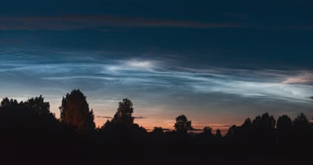 stříbřitý : The timelapse of floating silvery clouds before dawn over the silhouettes of trees on a summer night