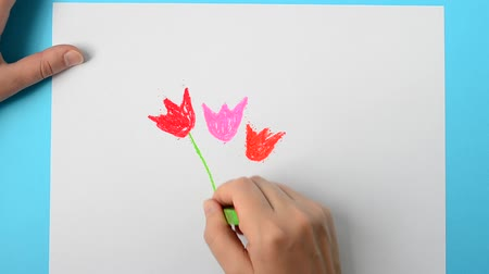 infantil : We draw a flower. Vídeos