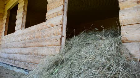 hayloft : Shed from a tree