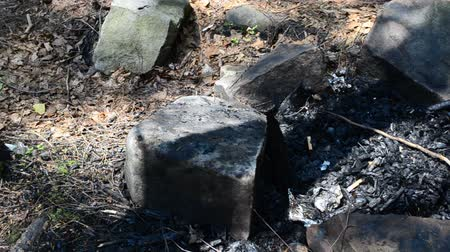 briquettes : Fire remains