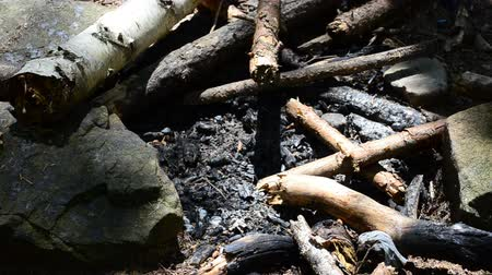 briquettes : Ashes and coals from a fire Stock Footage