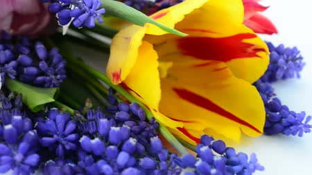 nisan : Spring bouquet Stok Video