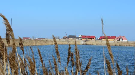 marsh : Houses ashore