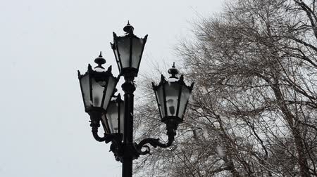 luty : Lantern and snow